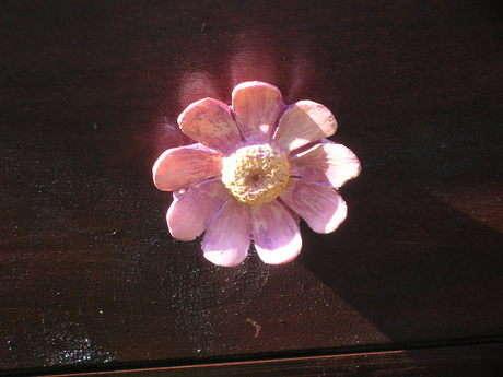 öndeki çiçek yakın