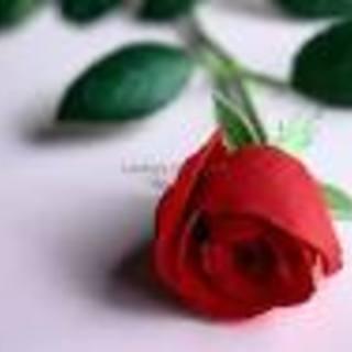 roser426