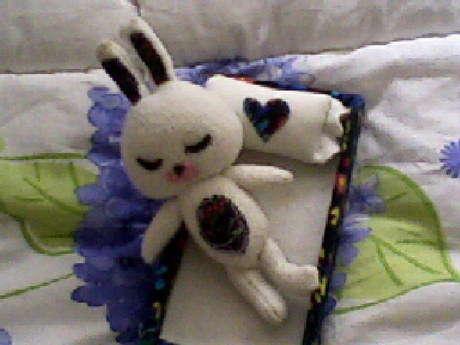 tavşancığın arkadaşı