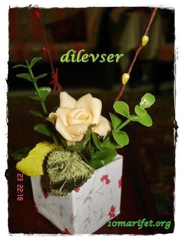 minik saksı çiçek :)