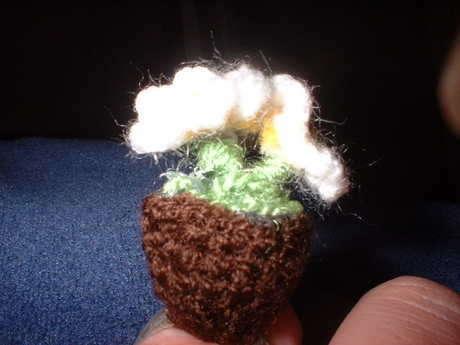 küçük çiçek, büyük yüzük :)