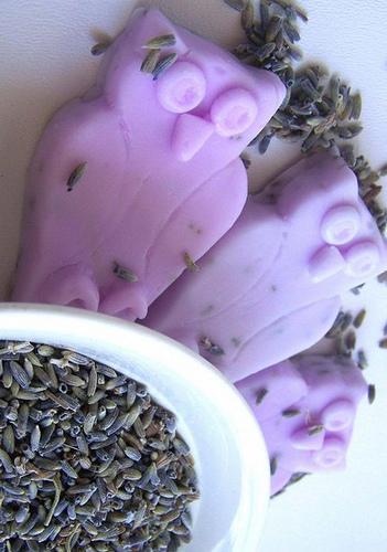 Lavantalı baykuş sabun