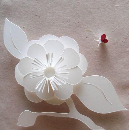 çiçek ve uğur böceği