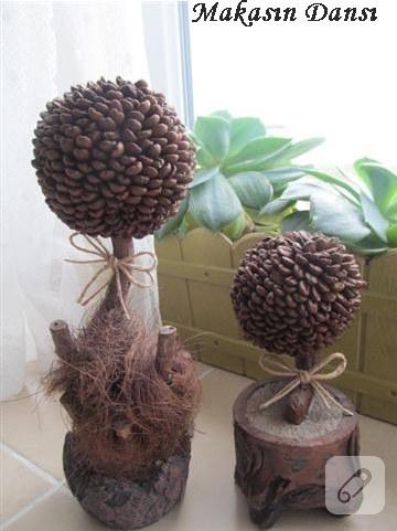 Dekoratif kahve ağaçları