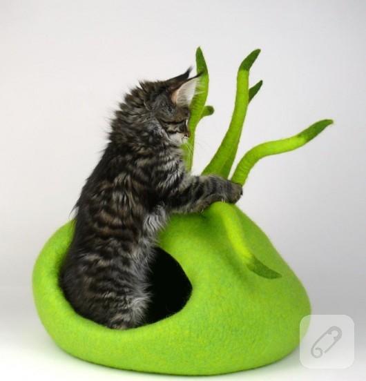 kedi yuvası