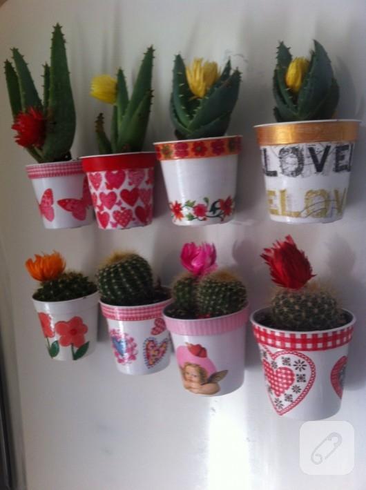 kaktus-magnetler