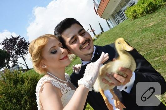 file-nikah-eldiveni-