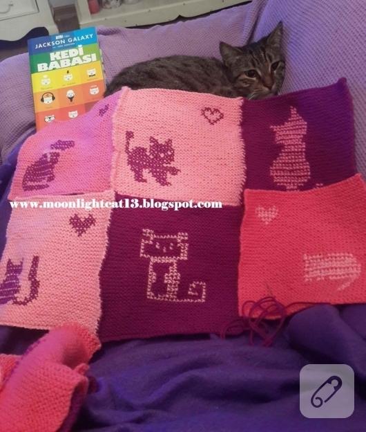 kedi-motifli-orgu-battaniye-modelleri-1