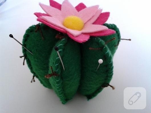 keceden-kaktus-ignelik