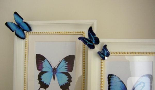 detay kelebek