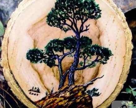 Odun Boyama 10marifetorg